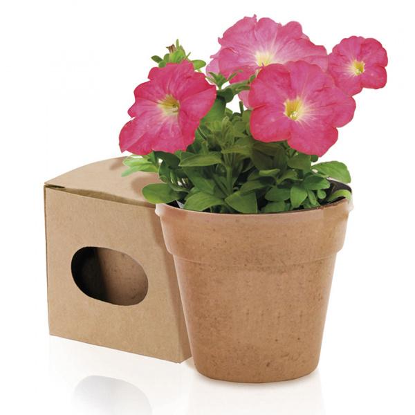 Vaso Bio 5/8 Semi di Petunia